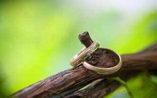 איך מפיקים חתונה בטבע?